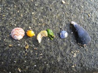 Rainbow order on the beach
