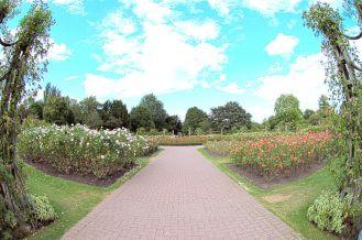 Regent's Park (The Avenue Gardens are best)