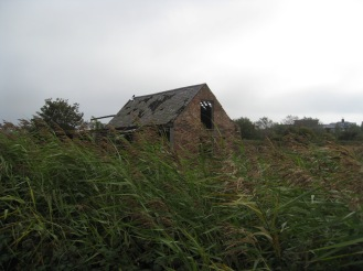 We also saw this old barnish thing