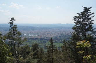 View to Florence