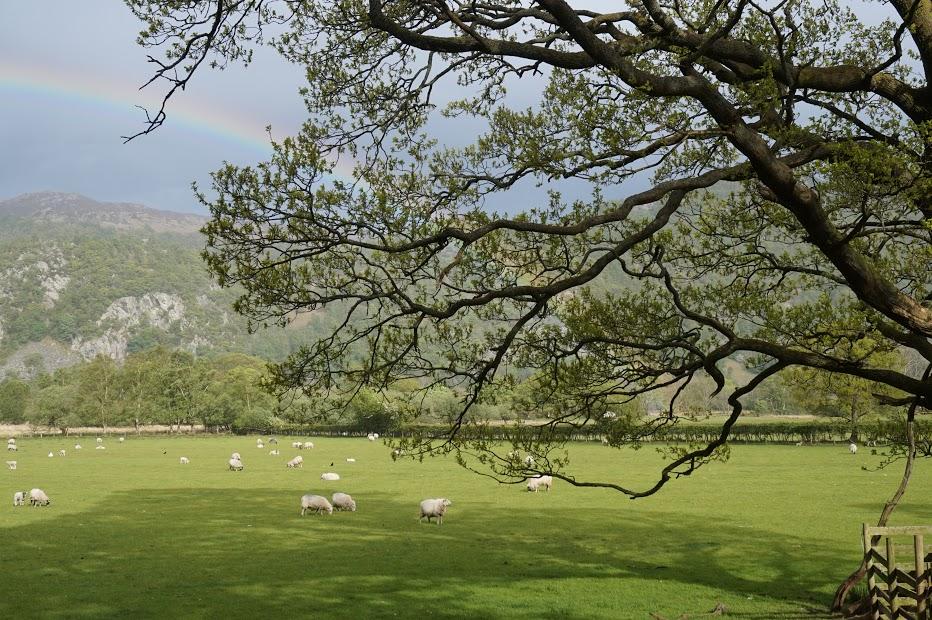rainbowkeswick